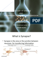 Structure of Synapse