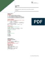 01a - Programacion Entera (Solucionario)