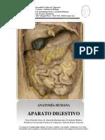 Aparato Digestivo Modulo
