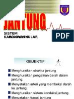 21595343-Jantung