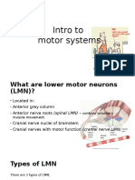Muscle Physiology Intro