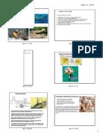ta symbiosis pdf