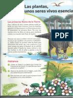 Las Plantas, Unos Seres Vivos Esenciales CIENCIAS SM(4º Curso)(1)