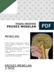 Proses Menelan