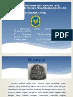 Ppt Bgl Mangan