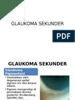 GLAUKOMA SEKUNDER NOFA LIDA.pptx