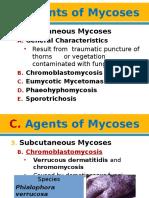 MycoViro 2