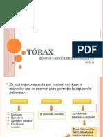 exploracindetrax-130409220005-phpapp02