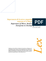 Importancia de La Micro, Pequeñas y Medianas Empresas en El Pais