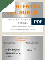 nutrientesdelsuelo23-120425013116-phpapp01