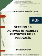 Expo Electiva Niif Para Pymes