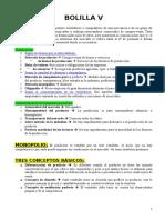 DIEGO -  BOLILLA V.doc
