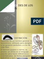 Guia Parasitologia 1 Parcial