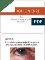 Enteropion