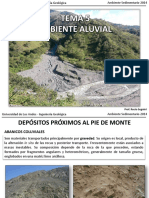 Tema 5 Ambiente Aluvial3