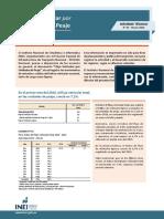 Informe Tecnico n03 Flujo Vehicular Ene2016