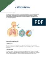 LA RESPIRACION CELULAR, TABAQUISMO Y CANCER DE LARINGE, FARINGE Y PULMON