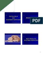 Sistema Nervoso I