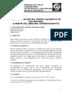 Práctica Nº 8. Determinacion Del Poder Calorifico Del Gas Natural a Partir Del Analisis Cromatografico