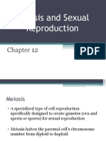 part 2 meiosis and sexual reproduction