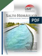 Salto Hidráulico