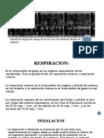 Ejercicicos de La Respiracion Estimulacion Del Lenguaje