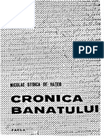 Nicolae Stoica de Hateg - Cronica Banatului