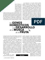 Genes Homeóticos y El Desarrollo de La Mosca de La Fruta CNS06505
