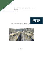 8634313-Flotaci-n-J-Yianatos.pdf