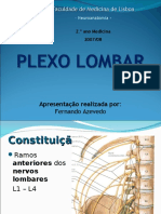 plexo-lombar-