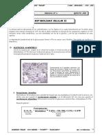 Metabolismo Celular II