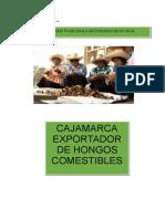 Informe de La Exportacion de Hongos