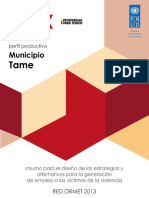 perfil_productivo_tame.pdf