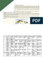 LAS-OCHO-REGIONES-NATURALES-DEL-PERÚ (1).docx