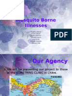 mosquito borne illnesses-1