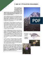 Patrimoine Pyrénées.pdf