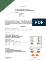 Captulo_3-_Molculas_de_la_vida.pdf