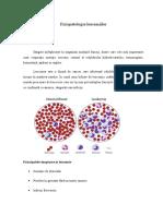 fiziopatologie leucemii