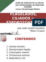 3 Ra Clase II Giardia Lamblia y Otros Flagelados