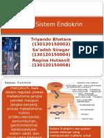 Sistem Endokrin Kel 1