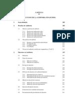 ejecucion de auditoria.pdf