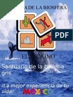 Revista de OCIT