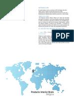 teoria PIB belgica