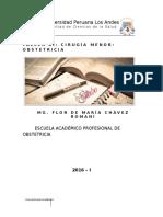 Silabo Taller XI -Cirugia Menor- Obstetrica 2016-i