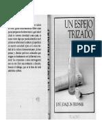 Bruner- Un Espejo Trizado Libro Completo