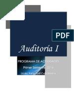 Programa Actividades Auditoría I- V Ciclo 2016