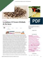 La Quinoa_ El Tesoro Olvidado de Los Incas - Barcelona Alternativa