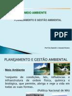 Planejamento x gestão ambiental.pdf