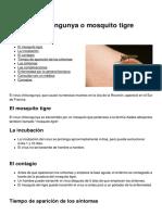 El Virus Chikungunya o Mosquito Tigre 3959 n1z5zd