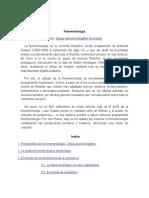 Fenomenología y Conceptualización